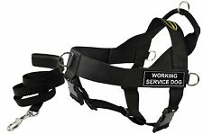 DT UNIVERSAL Working Harness & Dog Leash w/ Velcro Patch: WORKING SERVICE DOG