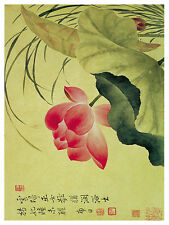 1260 Red Asian Flower. Floral Art Decor POSTER.Graphics to decorate home office.