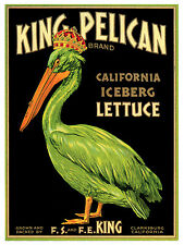 278.Art Decorative POSTER.Graphics to decorate home office.King Pelican Lettuce.