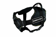 DT FUN with Chest Support Dog Harness in Yellow Trim - MAMMA'S BOY