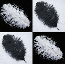 """Wholesale Quality 100pcs White/Black Ostrich Feathers For Wedding 16-26"""" long"""