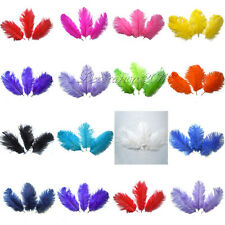 """10PCS 6""""-8""""/15-20cm Natural Ostrich Feathers approx Wedding Party Xmas Decor"""