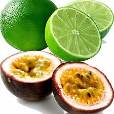 PASSION FRUIT & LIME Candle/Soap Making Fragrance Oil,Oil Burners,Diffusers