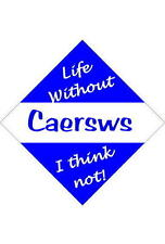 Caersws Car/window signs / Personalised signs / flexible magnets