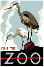6864.Visit the zoo.birds staring at the edge.perch on rock.POSTER.art wall decor
