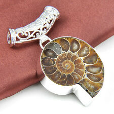 HOT ! Gorgeous Handmade Natural Ammonite Fossil Gemstone Silver Necklace Pendant
