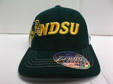 YOUTH North Dakota State NDSU Bison Gametime Zephyr Stretch Fit Fitted Hat