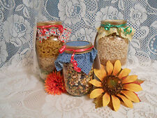 NEW Homemade Cookie Mix In A Quart Jar 35+ Varieties You Choose Flavor Gift