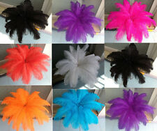 Wholesale 100pcs ostrich feathers decor wedding&Home,8-10inches choose color