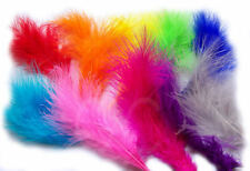 Feathers Large Medium Size 20+ Feathers. Many colours, Crafts, Costumes, Sewing