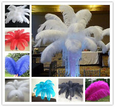 New 10-100pcs gorgeous 6-24inch/15-60cm High Quality Natural OSTRICH FEATHERS