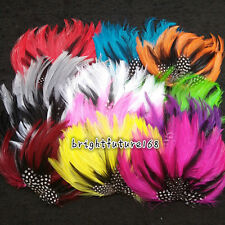 Free Shipping Natural Pad-Low Feather For Craft a variety of colors to choose
