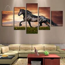 Black Horse On The Grass Canvas Print Painting for Living Room