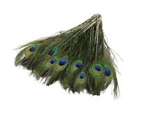 10-12inch Peacock Feathers Tail Natural Eyes For Bouquet Party DIY Decoration UK