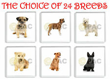 TERRIER DOG FRIDGE MAGNETS CHOICE OF 24 BREEDS