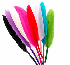 Quill Feathers For Crafting And Beading X 40, 8 Colours Available