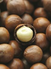 earthsgarden MACADAMIA OIL 100% PURE NATURAL ORGANIC BASE CARRIER OIL .