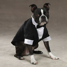 Halloween Yappily Ever After Groom Tuxedos  Dog Costume