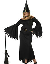 Plus Size Classic Wicked Witch of the West Adult Halloween Costume Womens