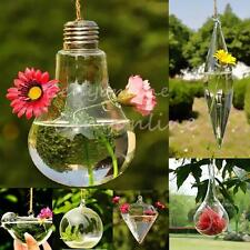 6-Style Hanging Glass Plant Flower Vase Hydroponic Container Pot Home Wall Decor