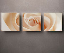 HD Print Oil painting Picture Modern Abstract Rose flower on canvas set of 3 005