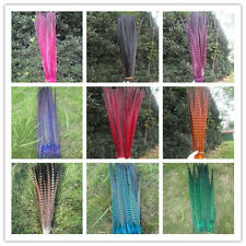 10-100 pcs beautiful natural pheasant tail feather 16-18 inch free shipping