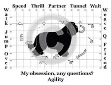 Bearded Collie Dog Agility Course - My Obsession, Any Questions? T-shirt
