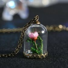 Handmade Hot  Real Dried Flower Seagrasses Glass Bottle Chain Necklace Pendant