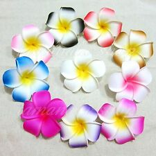 12pcs Multi-color 7cm Floating Frangipani Plumeria Hawaiian Flower Heads Wedding