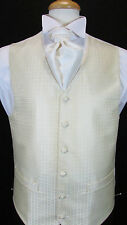NEW Mens Light Gold Patterned Wedding Waistcoat