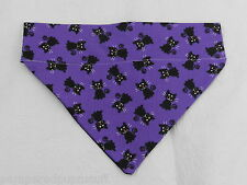DOG/CAT/FERRET 2 in 1 Over Collar REVERSIBLE Bandana~Halloween Black SPOOKY Cat