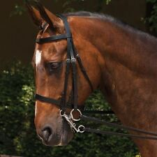 Requisite Weymouth Bridle Stainless Steel Horse Riding Equestrian Accessories