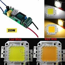 High Power AC 10W/20W/30W/50W/100W LED Driver Supply / LED Chip Light Lamp Bulb