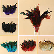 Bulk 100pcs Mixed 3-5inch/8-15cm Natural Rooster Tail Feathers For Wedding Party