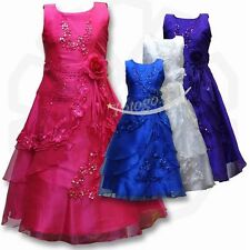 Baby Flower Girl Dress Kid Birthday Wedding Bridesmaid Pageant Gown Formal Party