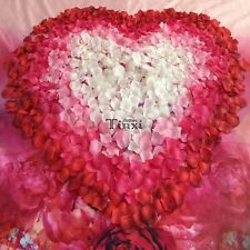 100pcs 5x5cm Silk Rose Flowers Petals for Wedding Party Table Confetti TXCL01