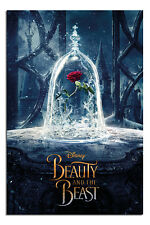 Beauty And The Beast Enchanted Rose Poster New - Maxi Size 36 x 24 Inch