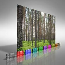Pine Forest Canvas Print Large Picture Wall Art