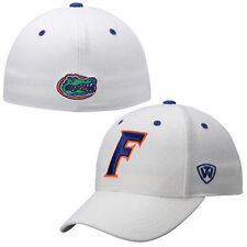 Florida Gators Top of the World Dynasty Memory Fit Fitted Hat - White - NCAA