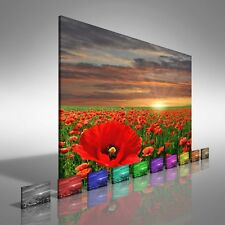 Poppy Field At Sunrise Canvas Print Large Picture Wall Print
