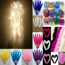 20/100/200/500pcs Colorful Rooster Tail Natural Feather Craft Costume DIY Decor