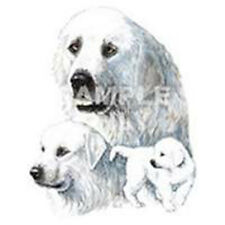 GREAT PYRENEES T-Shirt, Short Sleeve, DOG 302