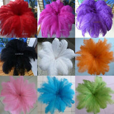 Beautiful! 10-200pcs natural ostrich feathers 8-10inch / 20-25cm