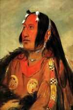 PIGEON EGG HEAD THE LIGHT YOUNG WARRIOR AMERICAN INDIAN 1834 GEORGE CATLIN REPRO