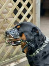 New Metal STRONG Wire Basket Dog Muzzle for Rottweiler, Mastiff etc.