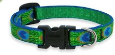 """Lupine Lifetime Dog Collar - 1/2"""" x 3 sizes - PEACOCK TAIL FEATHERS"""