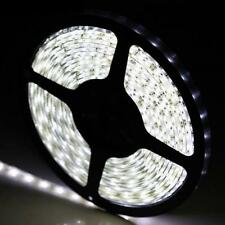 Pure White 5M 300/600led 3528/5050SMD Flexible Strip Light DC12V Home Deco X'mas