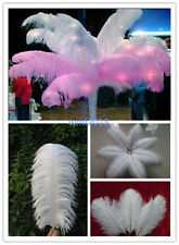 Pretty !10/50/100/200 pcs white ostrich feathers 6-24inch /15-60cm Free shipping