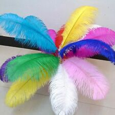 Wholesale 5-100 PCS ostrich feather 6 to 26 inches /15-65 cm a variety of colors
