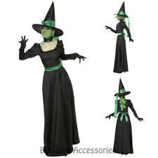 CL544 Wicked Witch Of the West Green Wizard of Oz Halloween Fancy Dress Costume